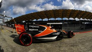 El McLaren Honda.