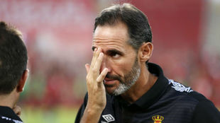 Vicente Moreno, técnico del Mallorca.