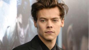 Harry Styles no aparecerá en la nueva versión de 'La...