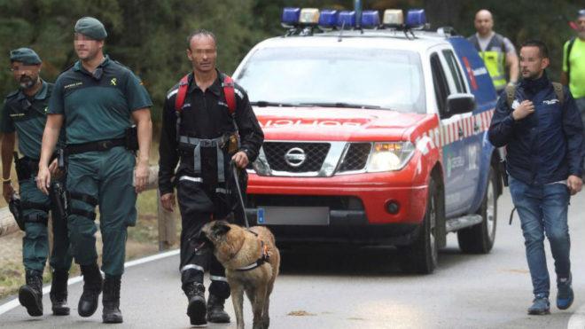 Un perro del operativo de rescate.