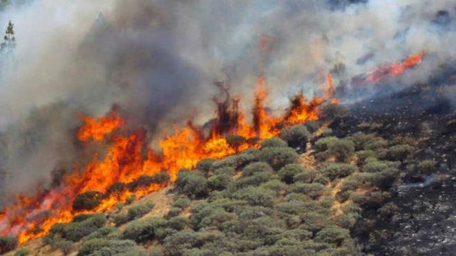 Vista del incendio declarado en la zona de Artenara en el oeste de la...