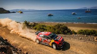 Los C3 WRC, camino de su primer doblete.