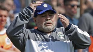 Diego Maradona, DT de Gimnasia.