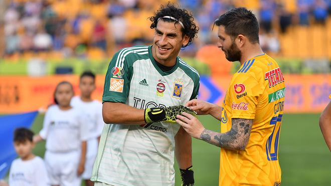 Guzmán y Gignac.