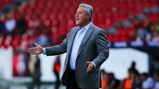 Víctor Manuel Vucetich, entrenador del Querétaro.