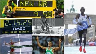 Bolt, Kipchoge, Powell, Radcliffe y Bekele