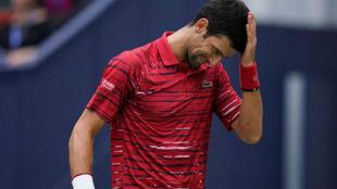 Djokovic, en Shangái