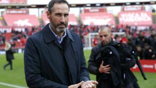 Vicente Moreno, entrenador del Mallorca.