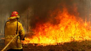 Uno de los numerosos incendios que asolan el este australiano.
