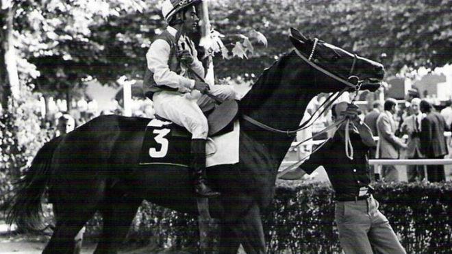 Román Martín, con 'Takir', el último gran caballo de Beamonte