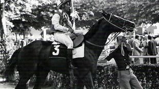 Román Martín, con 'Takir', el último gran caballo de...