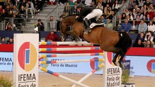 Marcus Ehning, en el IFEMA Madrid Horse Week.