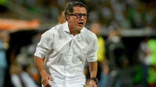 Juan Carlos Osorio llegaría al fútbol brasileño