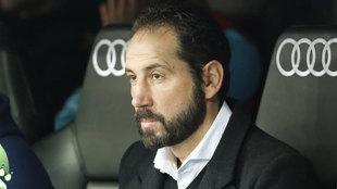 Pablo Machín, en el banquillo del Bernabéu