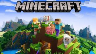 La edición en formato físico de Minecraft cuenta además con...