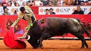 Imagen de laplazamexico.com