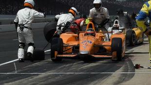 Alonso, con Andretti en las 500 Millas de 2017.