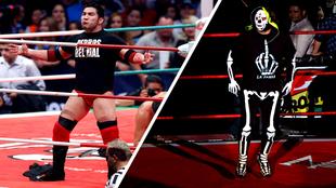 El Perro Aguayo Jr. y la Parka en actividad en el ring.