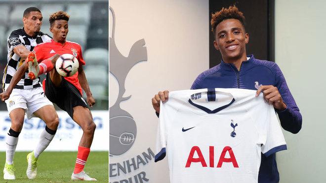 Gedson Fernandes, cerca de cambiar Benfica por el Tottenham