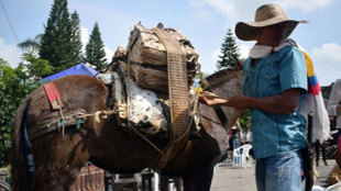 Moniquirá, el pueblo colombiano que huele a guayaba.