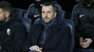 Diego Martínez en el banquillo del Camp Nou