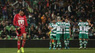 José Castillo se lamenta tras un gol de Santos.