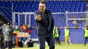 Antonio Mohamed, entrenador del Monterrey.