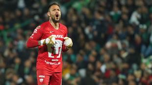 Alfredo Saldívar celebra un gol de Pumas.