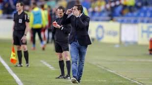 Rubén Baraja gesticula en la banda del Gran Canaria en el derbi...