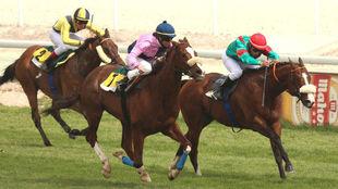 Nieves García consiguió con 'Wad Vison' su mejor victoria...