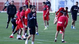 Los jugadores del Mallorca, durante un entrenamiento.