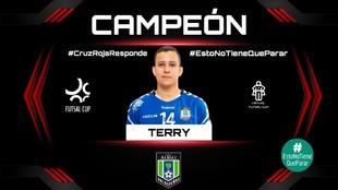 Terry, en el cuadro de honor como campeón de Virtual Futsal Cup.