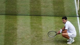 Djokovic, en la pista central de Wimbledon