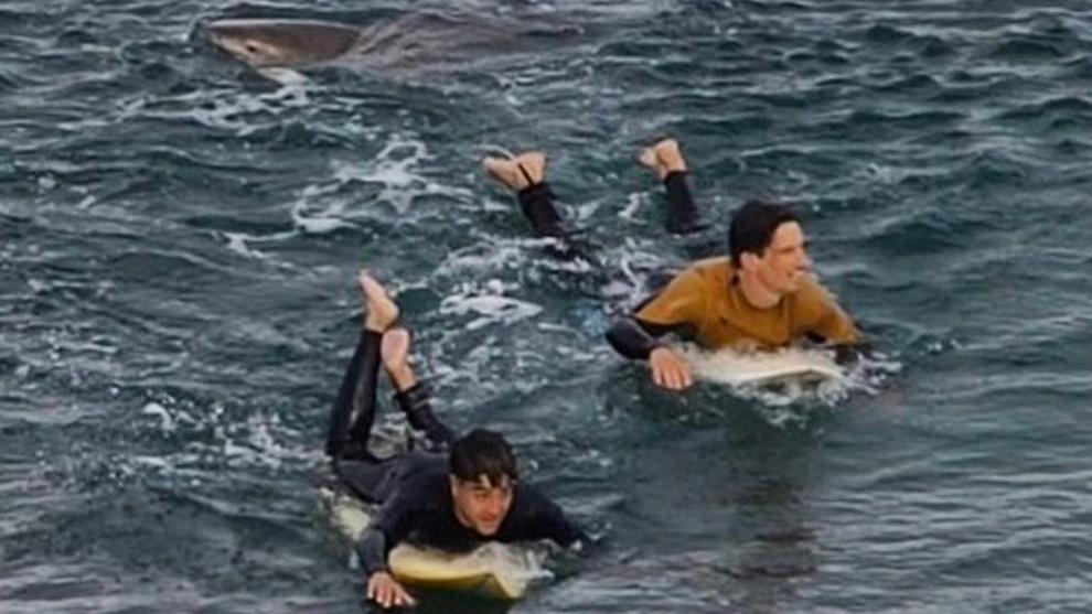 Un tiburón ataca a un surfista francés en Australia