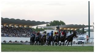 Imagen de un premio en el Hipódromo de La Zarzuela