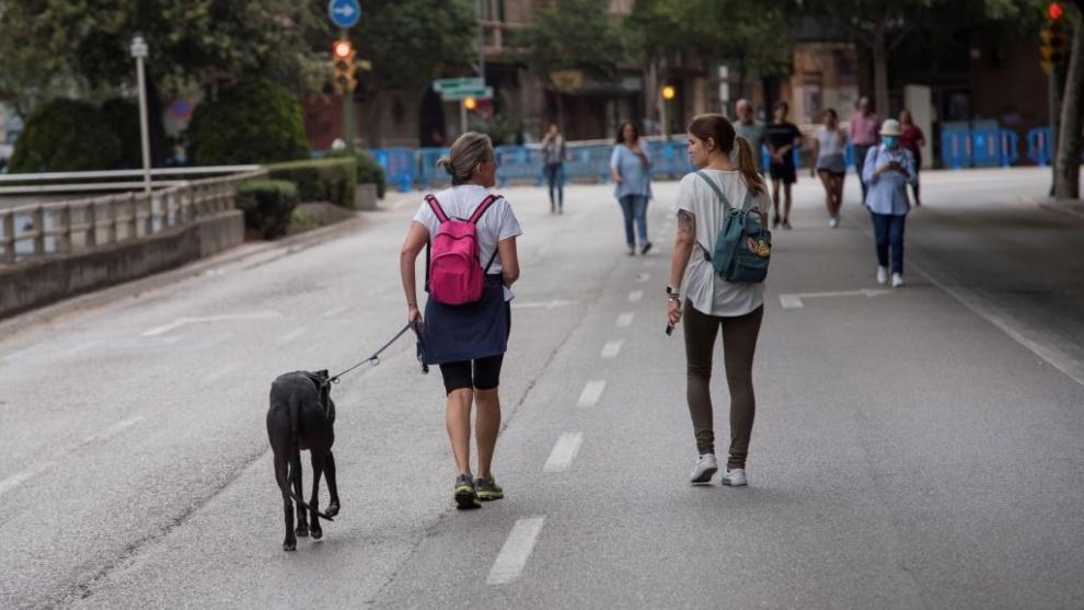 Las familias podrán pasear completas a partir del lunes en toda...