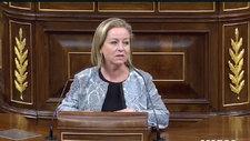 """El discurso de una diputada en el que se avegüenza del Parlamento: """"Me dan ganas de llorar"""""""