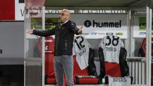 Peter Bosz se lamenta durante el partido entre Friburgo y Leverkusen.