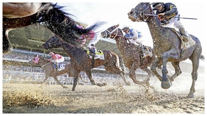 Imagen de la Belmont Stakes del pasado año.