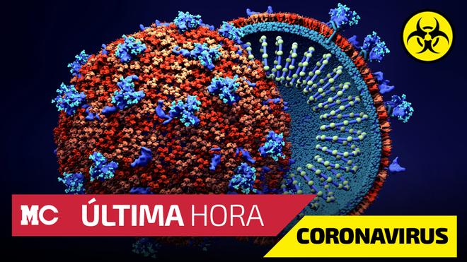 Coronavirus México hoy 20 de junio; últimas noticias