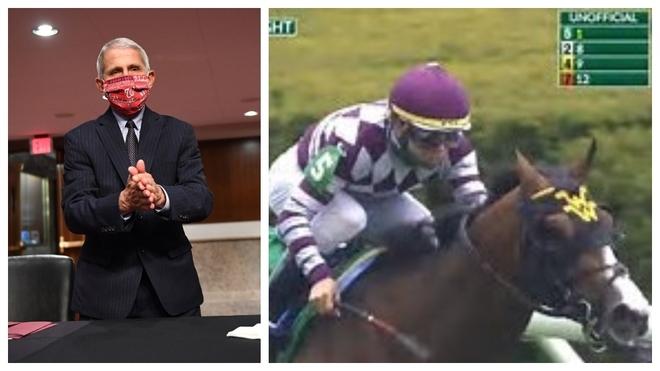 El doctor Anthony Fauci, a la izquierda, y el caballo con su nombre...