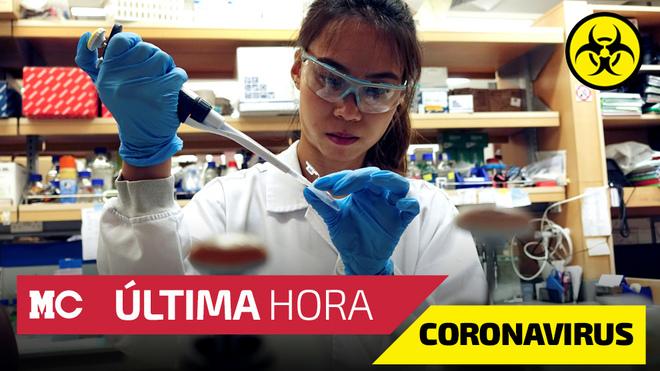 Coronavirus en México, noticias en vivo minuto a minuto viernes 8 de...