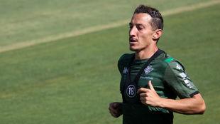 El jugador verdiblanco Andrés Guardado (33), en un entrenamiento.