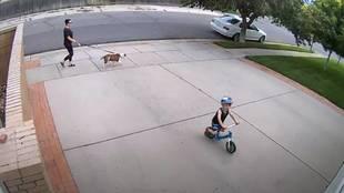 La reacción viral de un vecino con un niño que todos los días le hace saltar el sensor de su garaje