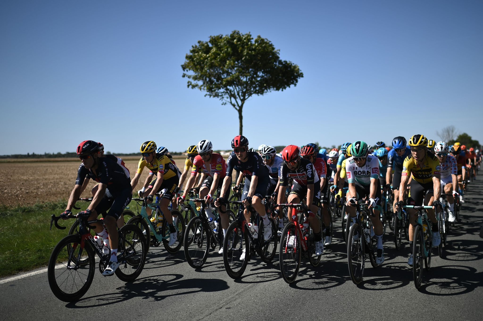 The pack rides during the 11th stage of the 107th edition of the lt;HIT gt;Tour lt;/HIT gt; de France cycling race, 167 km between Chatelaillon Plage and Poitiers, on September 9, 2020. (Photo by Marco BERTORELLO / AFP)