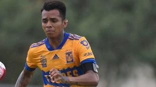 Ulises Cardona se incorporó a Tigres este Apertura 2020.