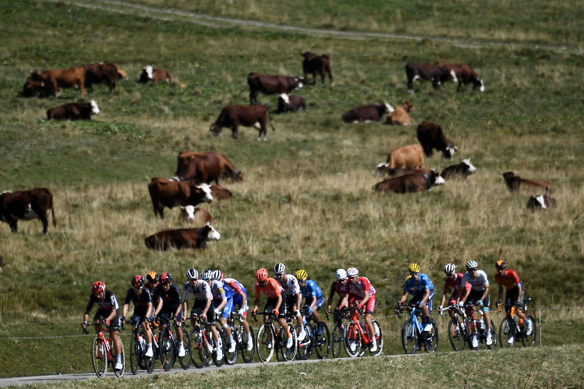 TOPSHOT - The escapees ride during the 18th stage of the 107th edition of the lt;HIT gt;Tour lt;/HIT gt; de France cycling race, 168 km between Meribel and La Roche sur Foron, on September 17, 2020. (Photo by Marco Bertorello / AFP)