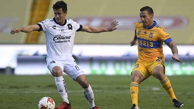 Liga MX hoy: Tigres UANL vs Gallos de Querétaro en vivo y en directo...