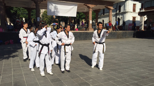 Estuvo como entrenador de la selección nacional de taekwondo