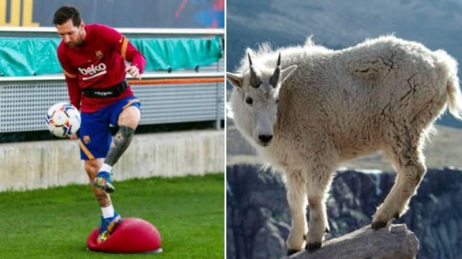 Est-ce la réponse la plus drôle au tweet de Messi de Barcelone?